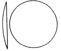 Dibujo esquemático de los vidrios de reloj
