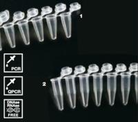 Tubos para PCR 0.2 ml en tiras
