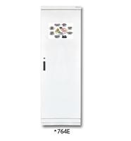 Armario para productos inflamables TIPO 60. 1 puerta.  Grande.